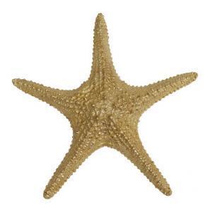 Скульптура Морская Звезда