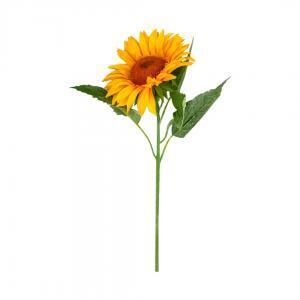 Цветы декоративные Подсолнух